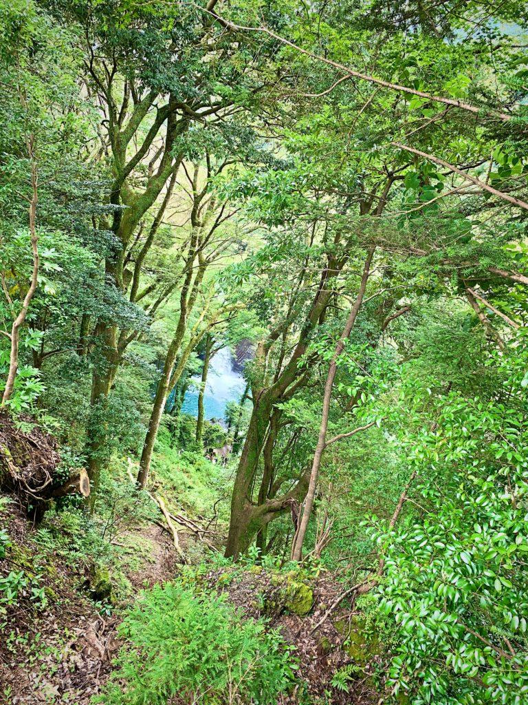 遠くから見た浄蓮の滝