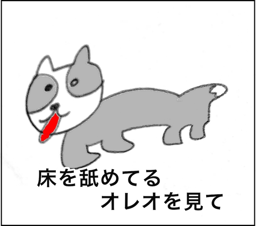 ボーダーコリー子犬成長ブログ