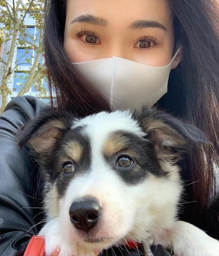 ボーダーコリー子犬抱っこ散歩へ!ブログ