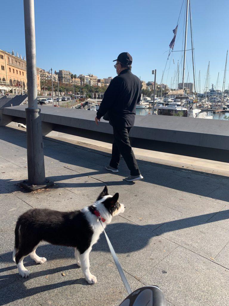 バルセロナでワンコもメトロに乗ってみた