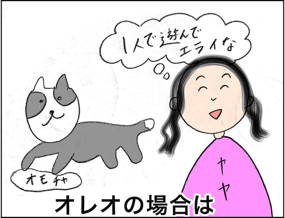 ボーダーコリー子犬の成長期ブログ