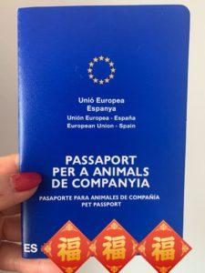 ヨーロッパでは定番?!ペットパスポートで犬と旅行