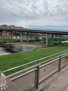 バルセロナでのボーダーコリーとの生活ブログ